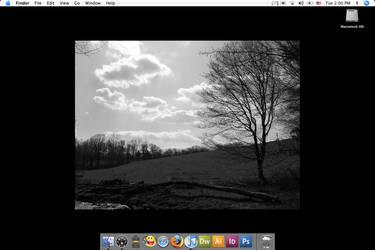 Desktop by UnicornSpirit