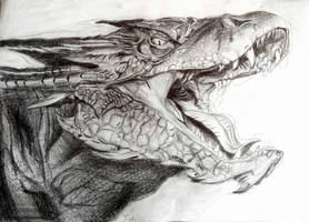 Smaug by IsabelleAuditore