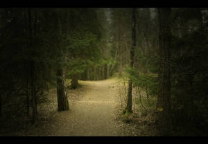 I'm on my way somewhere by mgot