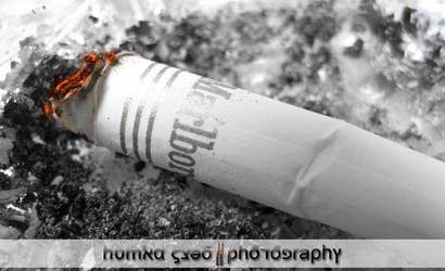 Cigeratte by humxa8