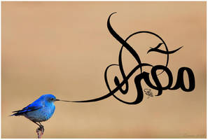 Egypt - the symbole of Peace by shoair