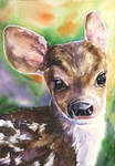 Baby Deer by GeorgeArt23