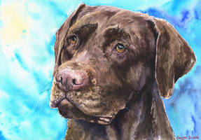 Chocolate Labrador by GeorgeArt23
