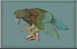 Iugulorynchus sydneii by Sheather888