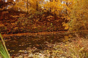 Autumn Swamp 6 by OOOri
