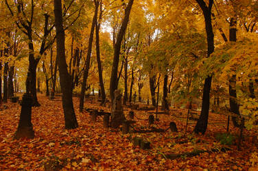Old cemetery in Autumn 3 by OOOri