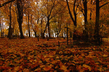 Old Cemetery in Autumn 4 by OOOri