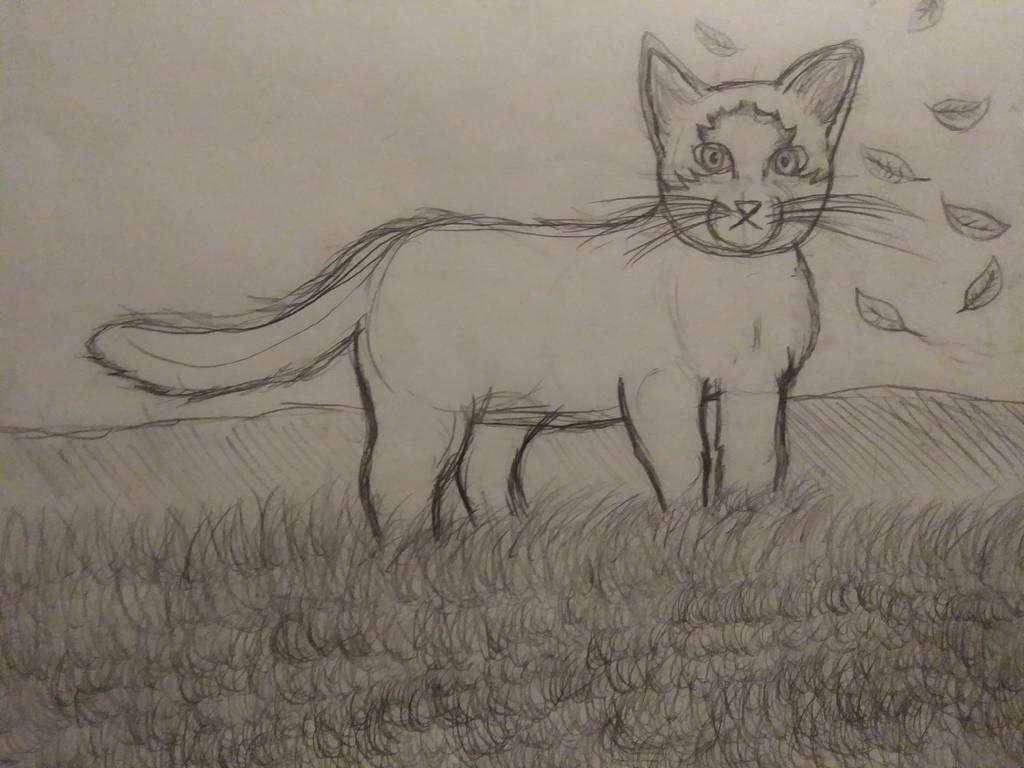 random cat drawing by TheWeirdMaddie