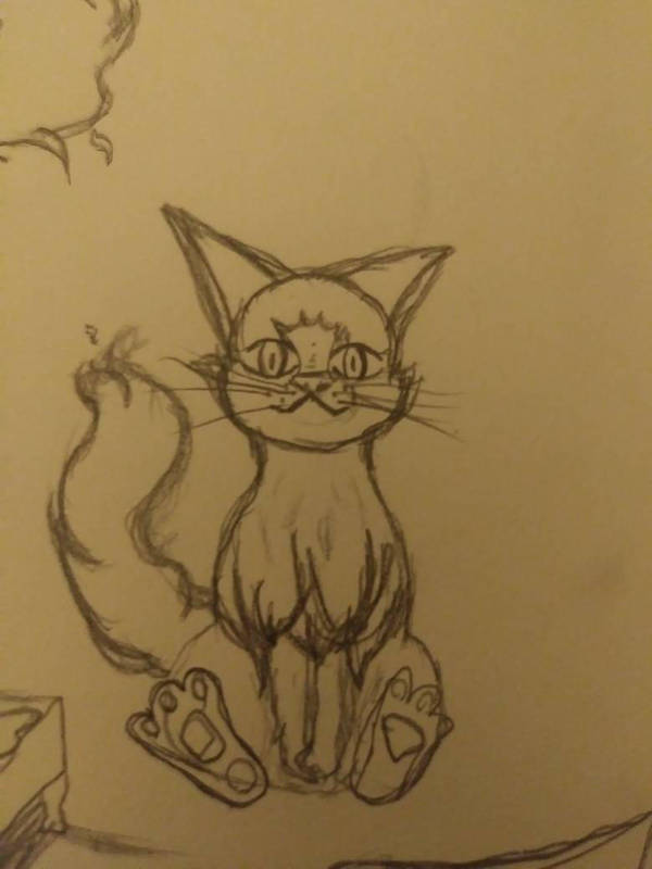 A normal cat by TheWeirdMaddie