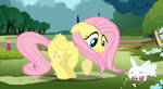 Fluttershy isn't sure about Angel by Glitched-Nimbus