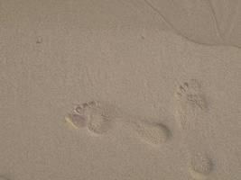Footprint in a sand by blagi
