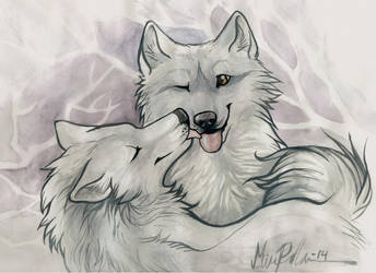 samoyeds in love by Mirnamiu