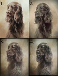 Progress of painting by Mirnamiu