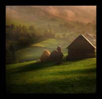misty countryside by MihaEla-Cojocariu