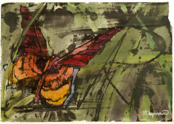 Butterfly by megs83