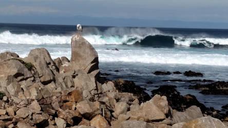 Waves crashing by peanutbutterhunter