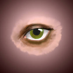 eye WIP by martyrMurk