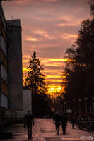 Sunset from Uppsala University area by iMehnaz