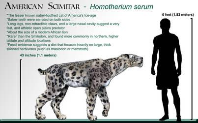 Homotherium_wikipedia by Dantheman9758
