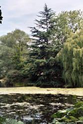 Buckingham Palace Garden 4 by mmp-stock