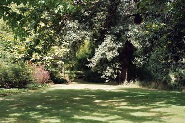 Buckingham Palace Garden 6 by mmp-stock