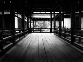 The Wandering Path by SarurunKamui