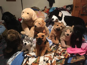 DOUGLAS AND OTHER PLUSH FOR SALE!!! by TwinTowergal