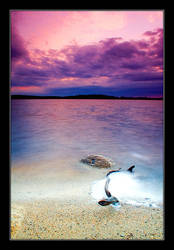 The Sunset by Yaninah