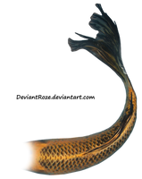 Mermaid Tail 08 (Orange Koi) by DeviantRoze
