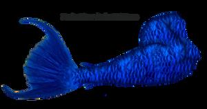 Mermaid Tail 10 (Blue) by DeviantRoze