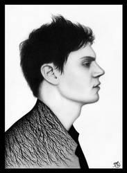 Evan Peters by OV-art