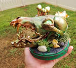 Green Gold Copper Hand Painted Coyote Skull by KillerKatDesigns