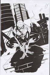 Black Spiderman by ComicInks