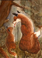 Fox by Sheevee