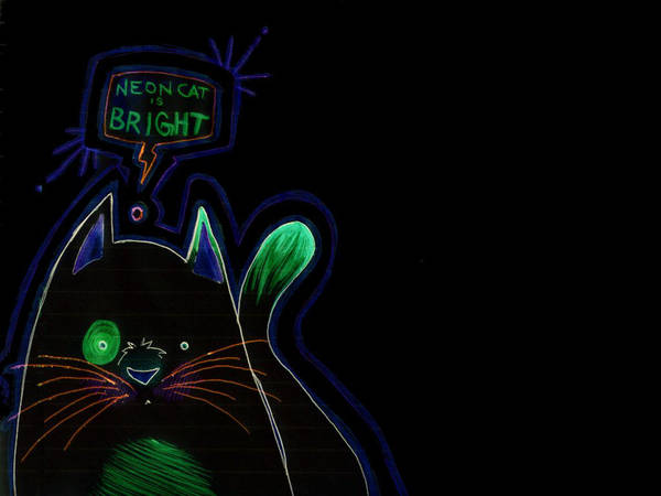 Neon Cat Wallpaper Dark By Jimmyeatfood On Deviantart