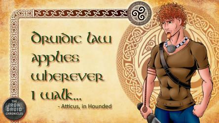 Iron Druid Background by MuShinGirl