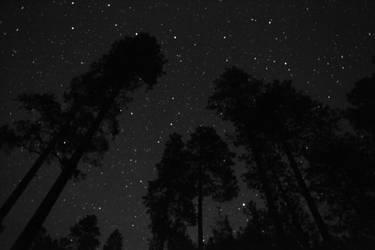 So Many Stars by Soul-Schism