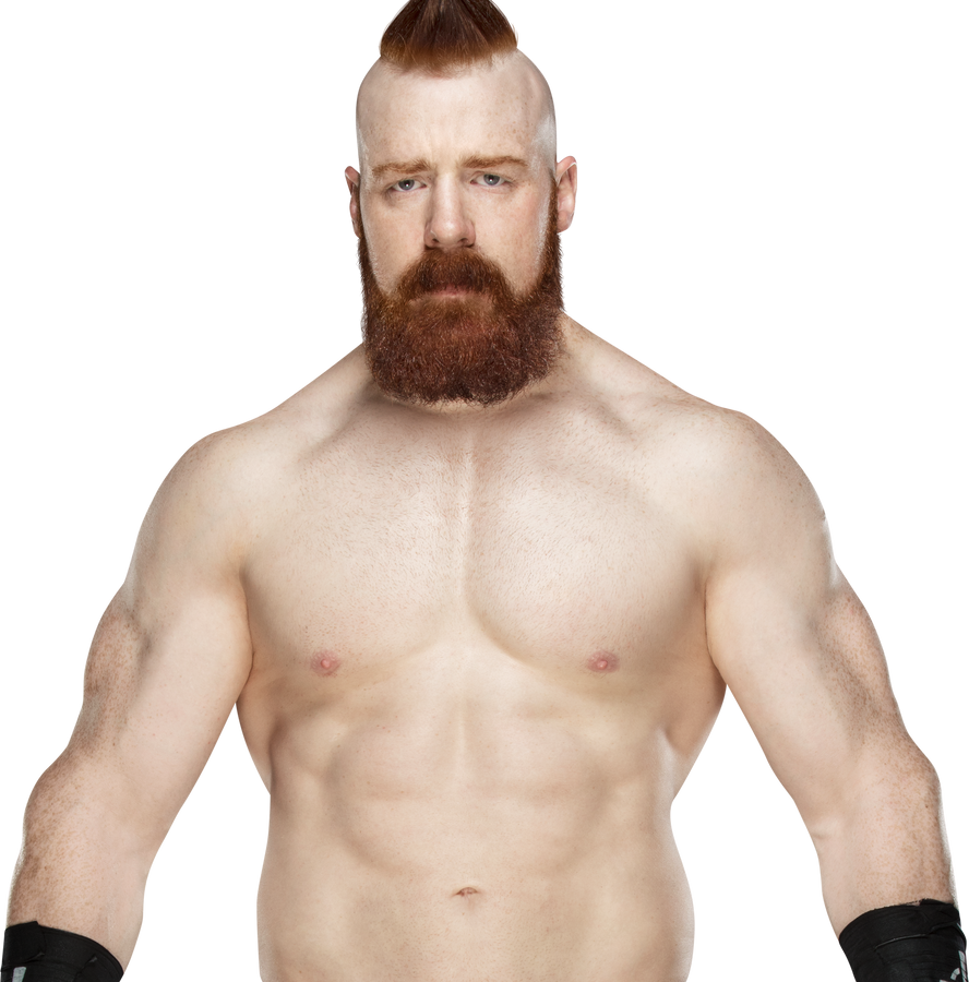 W 16 Png Ͽ� 2019 Ͽ�: Sheamus 2017 NEW PNG By AmbriegnsAsylum16 On DeviantArt