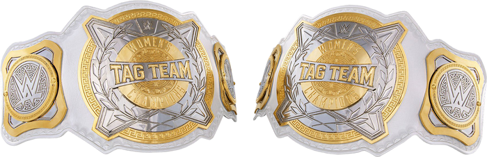 WWE Women's Tag-Team Championships 2019 PNG by AmbriegnsAsylum16