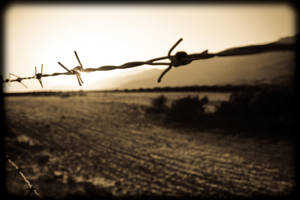 barbed wire dreams.. by Giorgos128