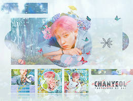 EXO - Chanyeol by Siguo
