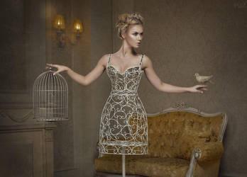 birdcage by VikkyCrystal