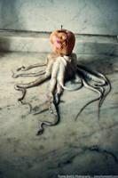 Aromatic Octopus by FrameZer0