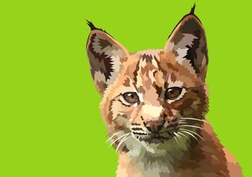 Baby lynx -  1 hour by elviraNL