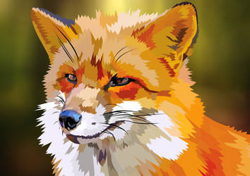 Red fox in forest by elviraNL