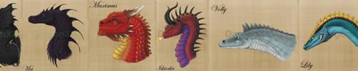 Dragons of Temeraire, A Study by DargonXKS