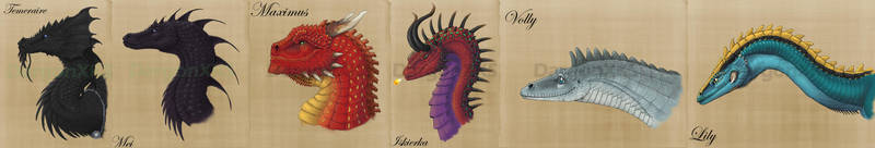 Dragons of Temeraire, A Study by DargonXKS