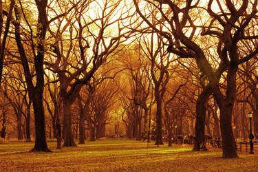 Autumn in New York by darkconsequence
