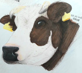 Cow - prismacolors by Okoe