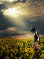 YellowField by maariusz